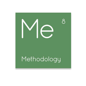 IT Element Methodology