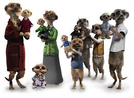 Meerkat family with toys